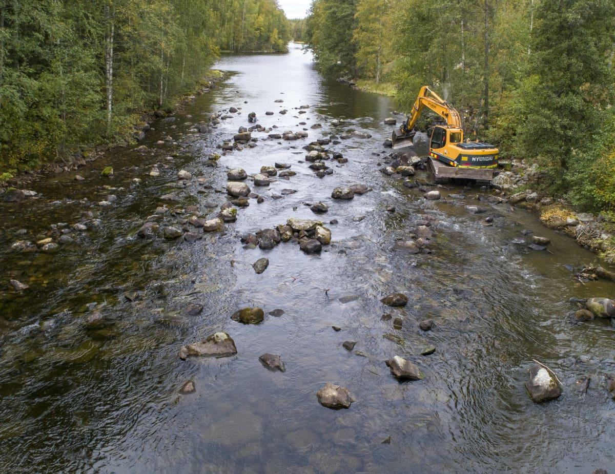 Kaivuri kunnostamassa Saunakoskea Savitaipaleella.