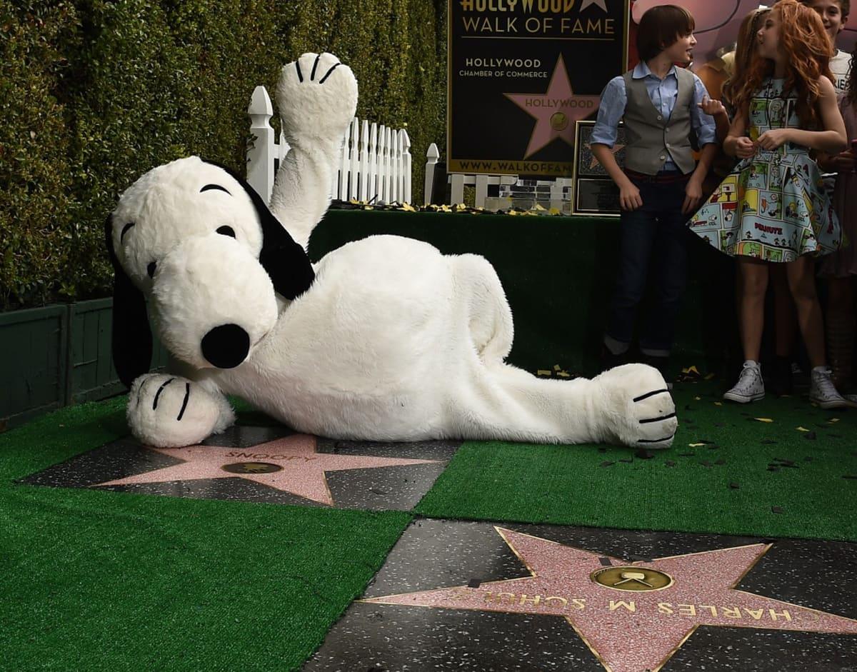 Ressu-koira poseeraa näyttelijöille Hollywoodin Walk of Famelle saamansa tähden äärellä.