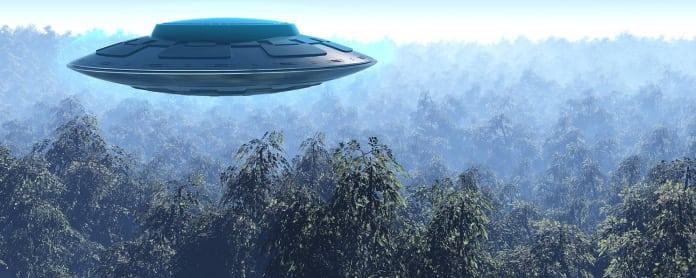 Ufo metsän yllä.