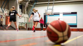 Nuoria pelaamassa koripalloa liikuntasalissa.