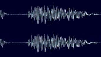 kuvankaappaus videosta jossa audiota