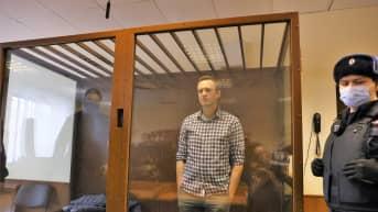 Aleksei Navalnyi seisoo ködet taskuissaan lasiseinäisessä häkissä oikeussalissa.Hänellä on ruudullinen paita. Häkin edessä seisoo univormupukuinen mies.