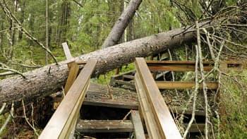 Helvetinjärven kansallispuisto kärsi myrskystä.