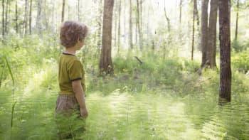 Poika seisoo saniaisten keskellä.