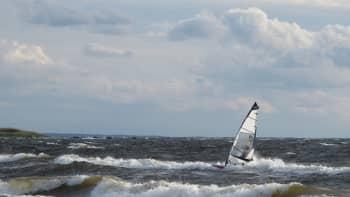 Surffaaja ratsastaa aalloilla