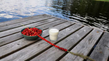 Laiturille katettu lasi maitoa ja astia mansikoita