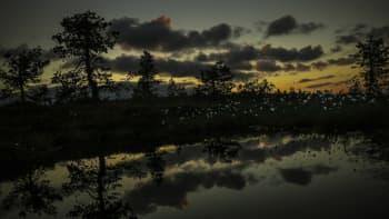 Öinen maisema Posiolla