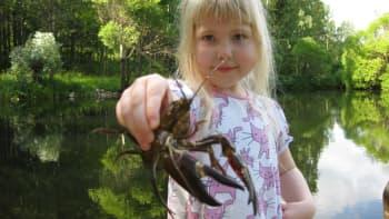 Tyttö pitää rapua kädessä