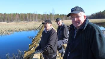 Markku Niemelä (edessä), Martti Koljonen ja Pentti Hytönen ovat Heinäjoen luontopolun keskeisiä aktiiveja.