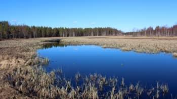 Pakkasyön jäljiltä Heinäjoki näytti viileältä.