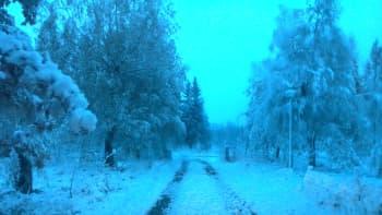 Luminen tie
