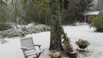 Pihakalusteet lumipeitteen alla
