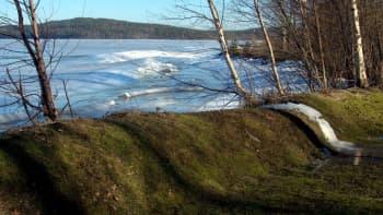 Keväinen järvimaisema.