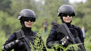 Acehin huumepoliisi tuhosi 189 hehtaarin kannabisviljelmän.