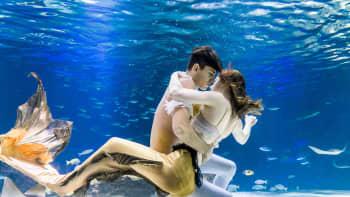 Merenneito-show Hanwha Aqua Planetissa, Soulissa, Etelä-Koreassa  7. elokuuta.