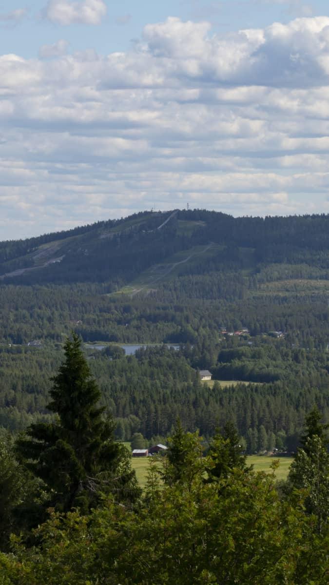 Vuokatinvaarat Naapurinvaaralta nähtynä.