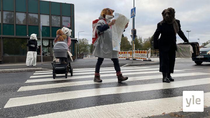 Pääseekö kettuhahmo turvallisesti suojatien yli? Liikenneturvallisuusperformanssi järjestetään Kajaanin aamuliikenteessä: 15.09.2021 08.21
