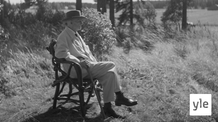 Sibelius ihaili joutsenia ja kurkia