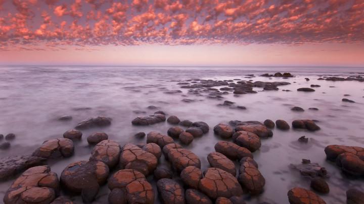 Mikä oli elämän alkuneste ja mitä on elämän informaatio?
