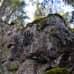 Jyrkkä kalliorinne metsässä