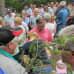 Kyläkävelyssä Pilpalassa oli tungosta, paljon väkeä ahtautuneena metsikköön