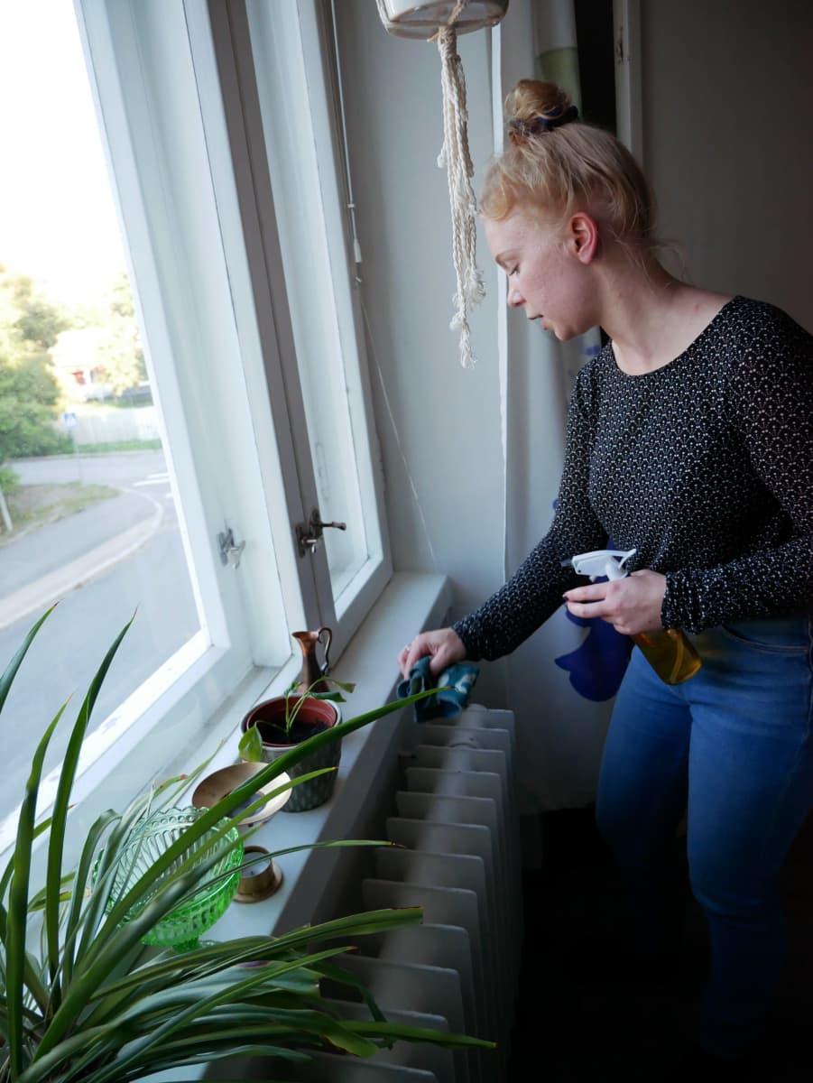 Hannele Kemppainen pyyhkii ikkunalautaa kädessään suihkepullo.