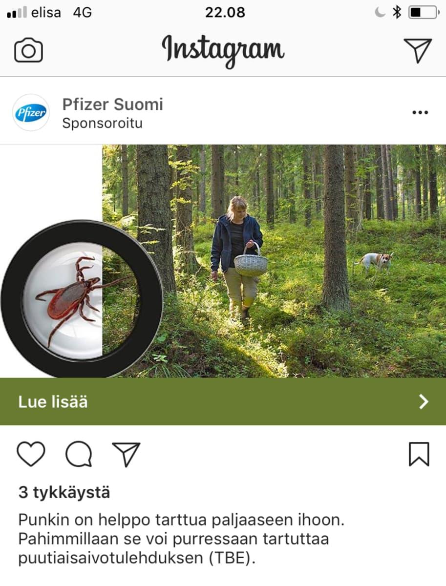 Kuvakaappaus Instagram-tililtä.