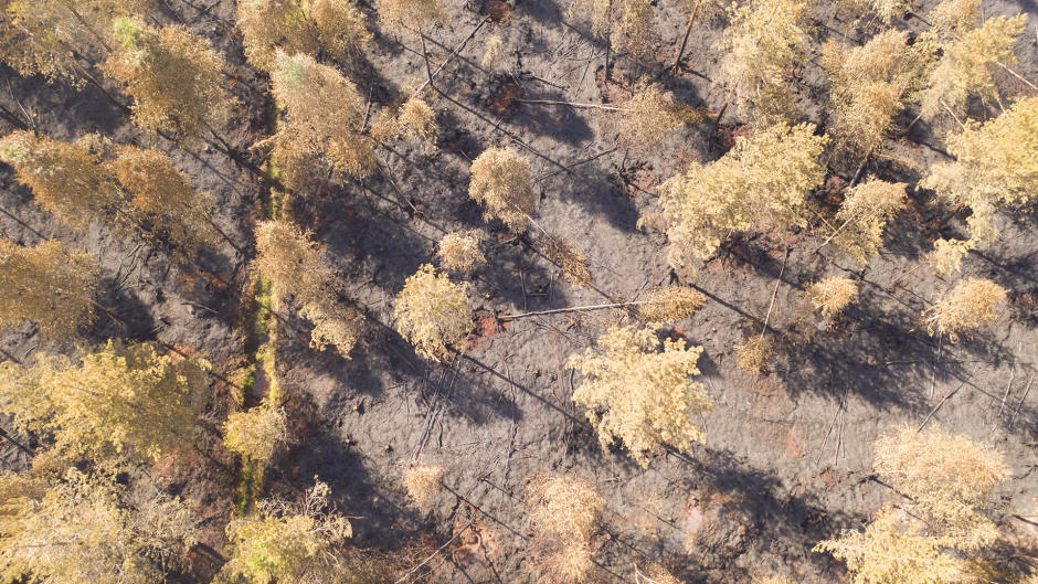 Video shows Muhos forest fire aftermath