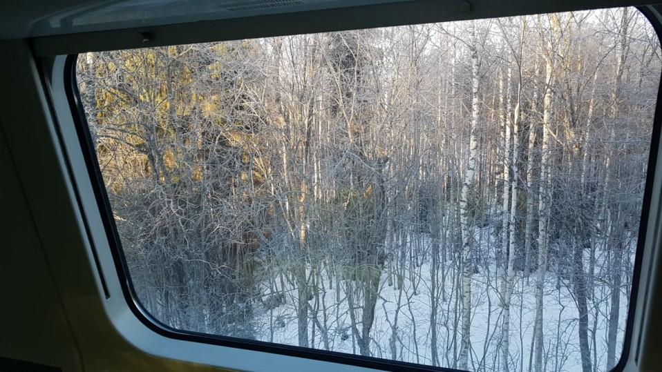 Näkymä InterCity-junan ikkunasta Mäntyharjussa.