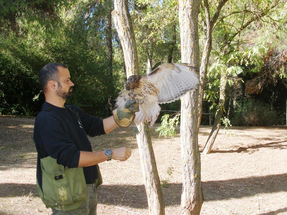 Zina ei lehahda lennokin perään kenenkään muun kuin ohjaajansa Stavros Athanasioun kädestä.