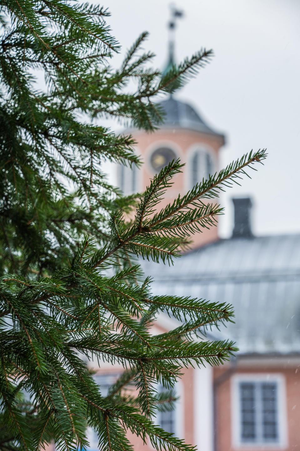 Julgran i förgrunden och rådhus i bakgrunden